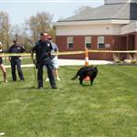 Canine Officer Lennox demonstration
